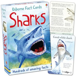 Usborne Fact Cards: Sharks