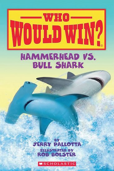 Who Would Win? Hammerhead vs. Bull Shark