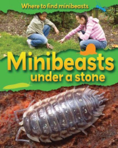 Where to Find Minibeasts: Minibeasts Under a Stone
