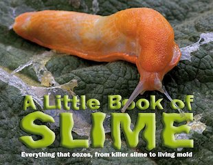 A Little Book of Slime