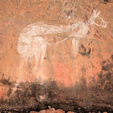 Aboriginal drawing of a kangaroo