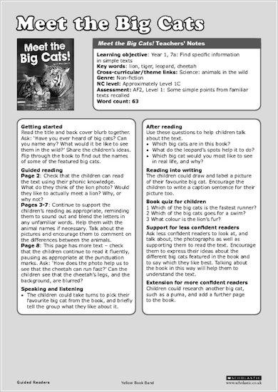 Meet the Big Cats! - Teachers' Notes