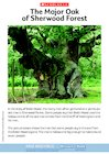 Robin Hood – The Major Oak of Sherwood Forest