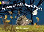 It Was a Cold, Dark Night (Book Band Yellow)