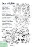 Our wildlife! poem  (1 page)