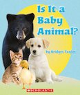 Guided Readers: Is It a Baby Animal? x 6