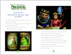 Shrek Forever After - Sample Chapter (1 page)