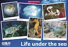 Life under the sea – poster
