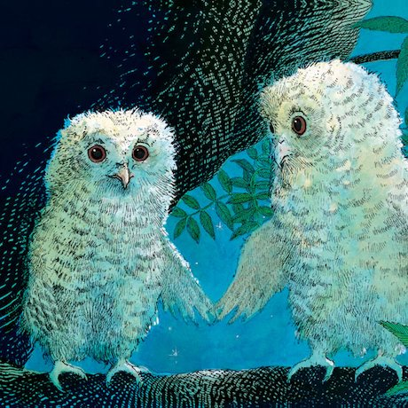 Detail from Owl Babies illustration