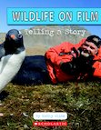 Wildlife on Film