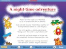 A night-time adventure