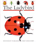 First Discovery: The Ladybird