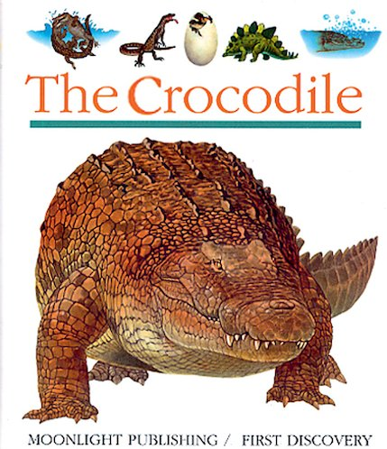 First Discovery: The Crocodile