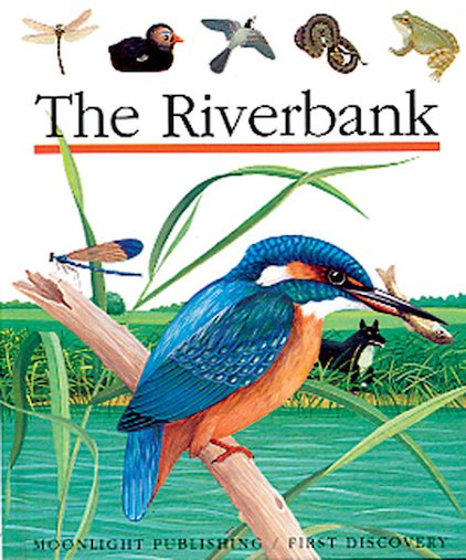 First Discovery: The Riverbank