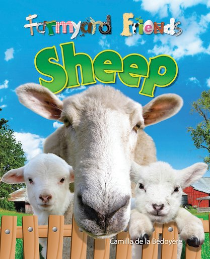 Farmyard Friends: Sheep