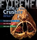 Extreme! Life in the Crusher