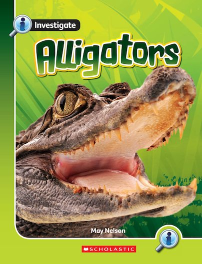 Investigate: Alligators x 6