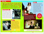 Hotel for Dogs: Sample Fact File (1 page)