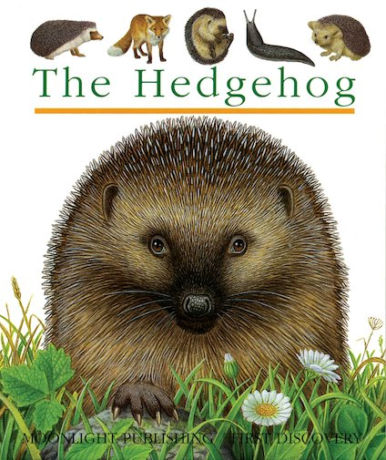 First Discovery: The Hedgehog