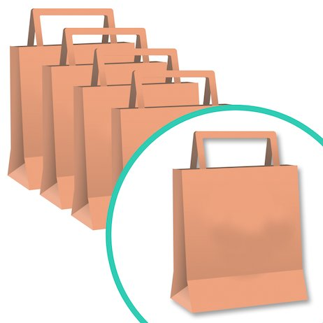 Scholastic Paper Bags: Pack of 25