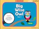 Spelling simplified: Big Wise Owl game