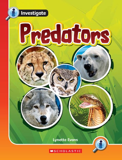 Investigate: Predators (Overview) x 6