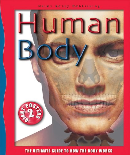 Ultimate Guides: Human Body