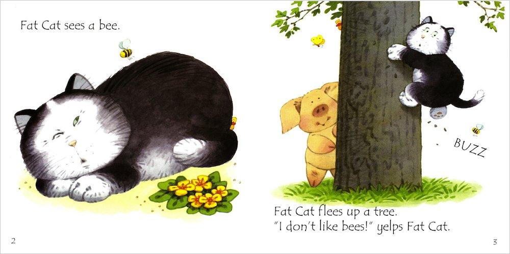 Usborne Phonics Readers Fat Cat On A Mat Scholastic Shop