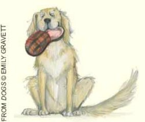 dogswebready.jpg