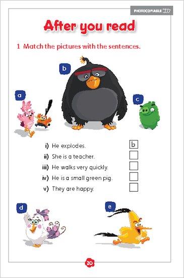 Angry Birds: Pigs on Bird Island sample activity