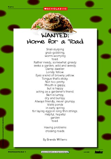 Home For A Toad Environmental Poem Primary Ks2 Teaching
