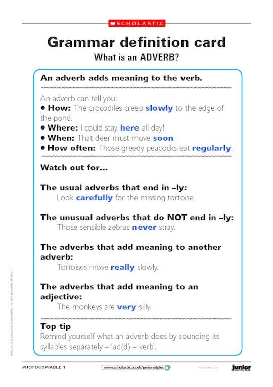 Grammar safari park - adverbs and pronouns