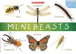Minibeasts (1 page)
