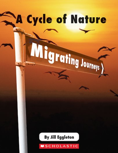 Connectors: A Cycle of Nature - Migrating Journeys x 6