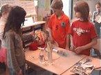 The International School of The Hague video - part 1