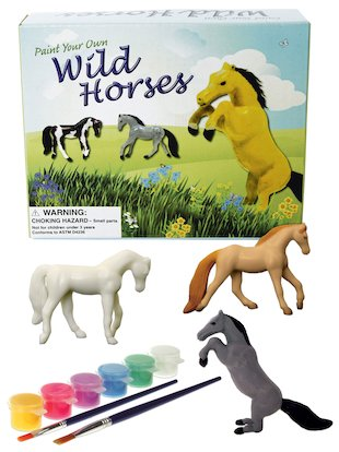 Paint Your Own Wild Horses