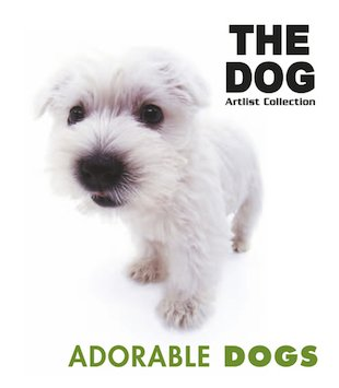 The Dog: Adorable Dogs