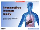 The human body – interactive resource
