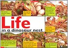 Life in a dinosaur nest