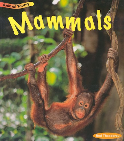 Animal Young: Mammals