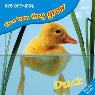 See How They Grow: Duck