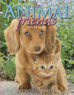 Animal Friends Poster Book