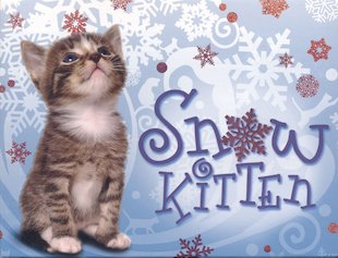 Snow Kitten Stationery Box