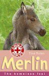 Animal Rescue: Merlin the Homeless Foal