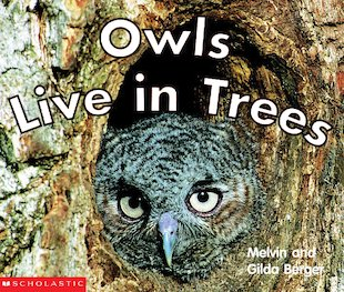Owls Live in Trees (TTD)