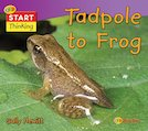 Start Thinking: From Tadpole to Frog