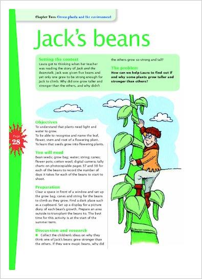 Jack's Beans