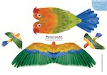 Paper model animals: Parrot (2 pages)