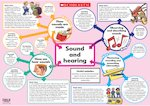 Sound and hearing poster (1 page)