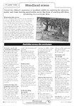 Woodland scene - activities (1 page)
